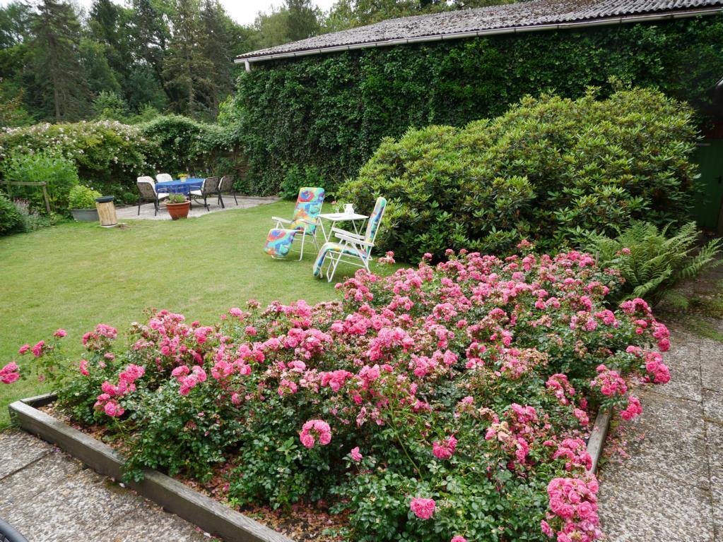 Fewo Hinrichs - Garten